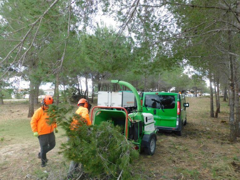 desbroce forestal Tarragona